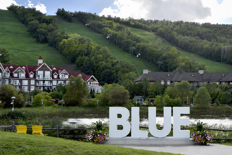 Blue Mountain Real Estate